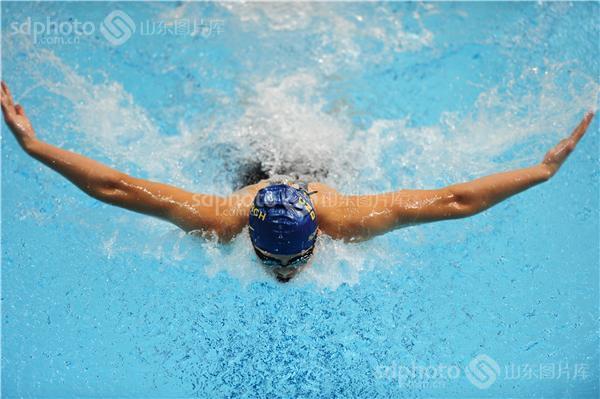 第二十二届山东省运动会游泳比赛