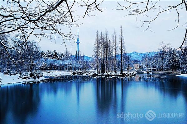 青岛中山公园雪景