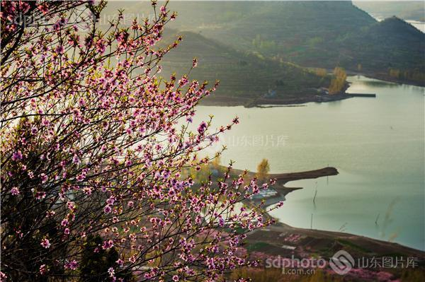 图片关键字:枣庄,龟山,孟庄镇,龟山风景区,龟山风光,山东省地质公园