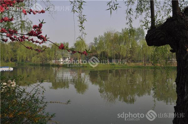 瘦西湖景区,江苏景点,扬州景点,江苏旅游,旅游,国家名胜区,风景名胜