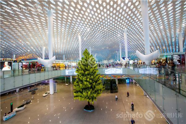 深圳新机场