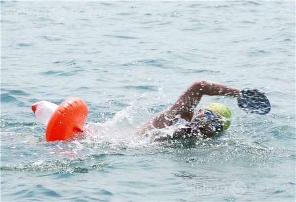 2014横渡刘公岛海湾全国游泳邀请赛在威海开赛