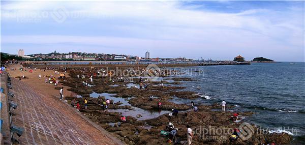 图片关键字:青岛,琴岛,岛城,城市,建筑,海滨,海边,大海,海,海上,海滨