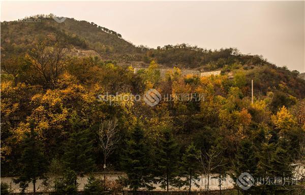 图片关键字:济南,九如山,九如山风景区,山峰,生态景区,自然景区,旅游