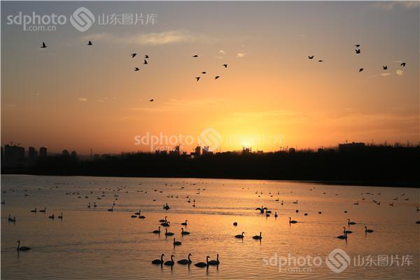 河南,三门峡,景区,风景区,天鹅城,园林,生态,原生态,自然,大自然,古城