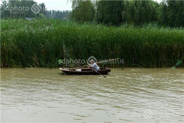 图片关键字:滕州,枣庄,旅游,运河文化,古城,风景,微山湖,红荷湿地,船