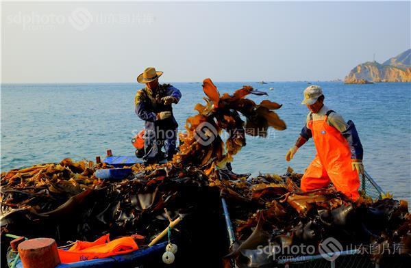 渤海深处的瑰丽岛——大钦岛