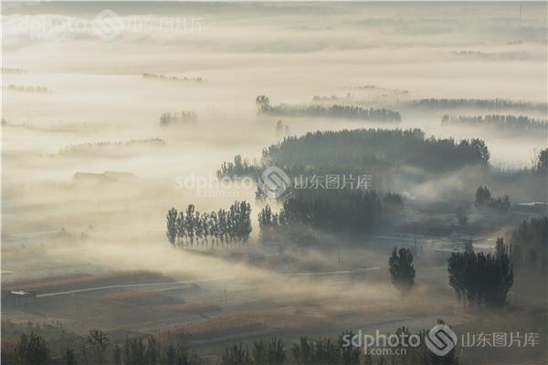大地上最靓丽的风景线 图片关键字:金秋,沂蒙山,临沂 临沂市 秋 秋天